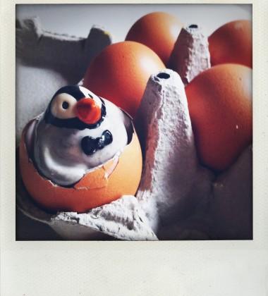 carte postale pingouin boîte oeufs moineauxandco