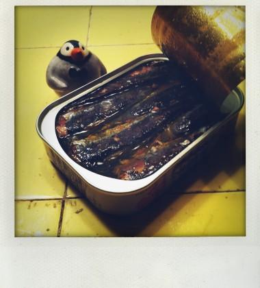 carte postale pingouin boîte sardines moineauxandco