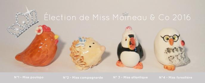 Élection de Miss Moineaux & Co 2016 !