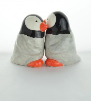 Poivre et sel couple de pingouins.
